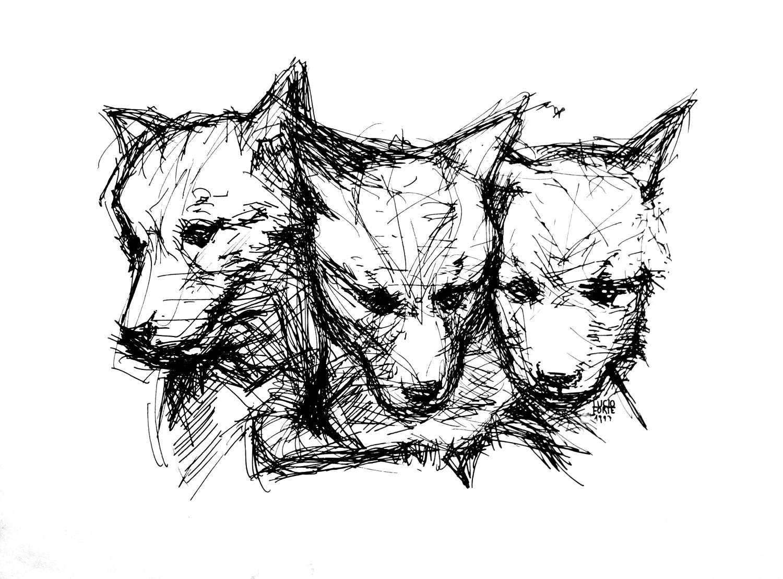 Wolf Cubs b